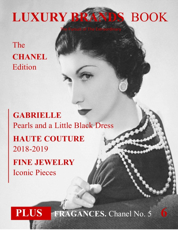 6. The Chanel Edition (Luxury Brands Book)